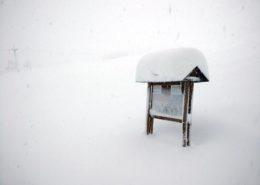 situazione neve